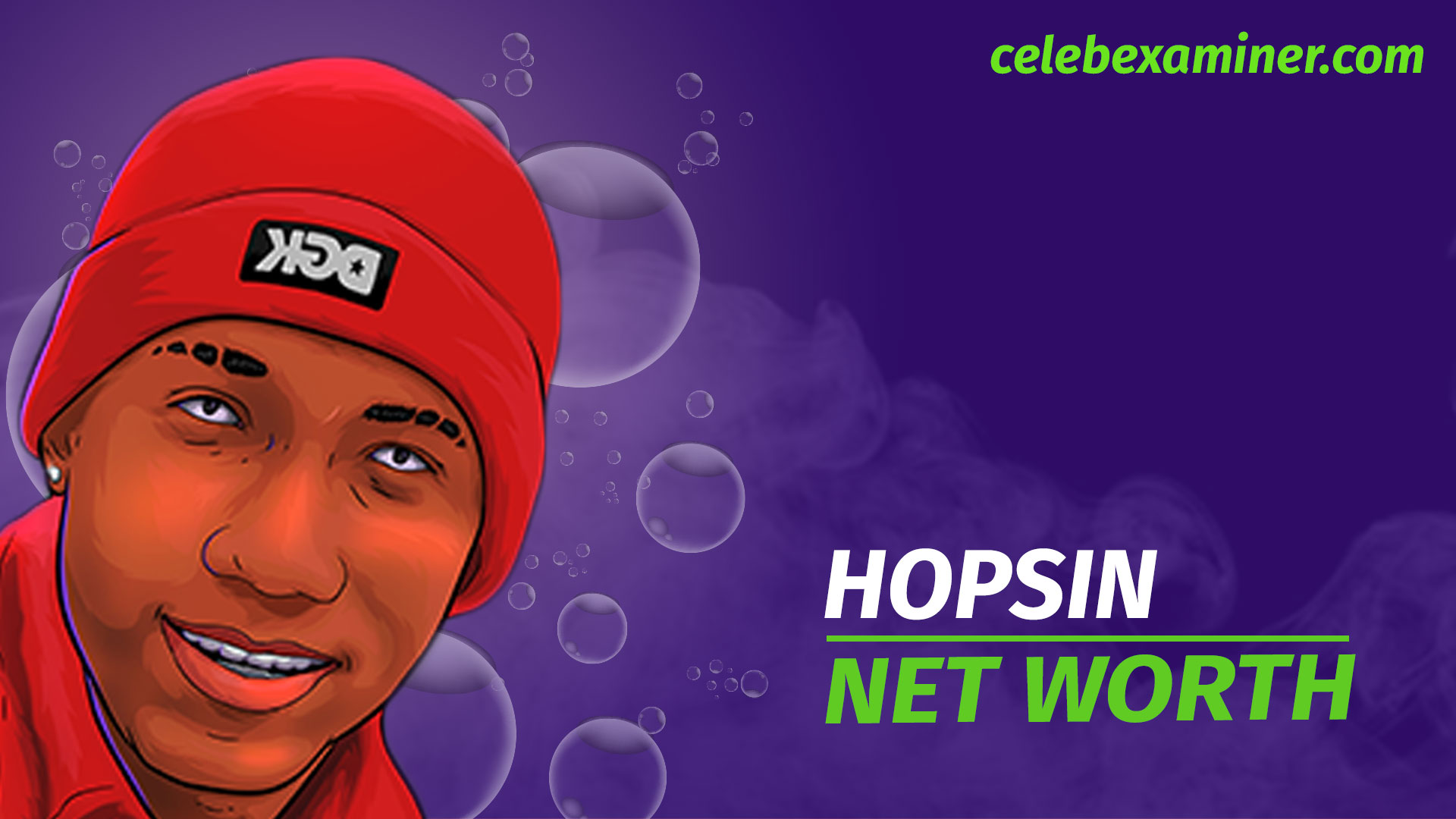HOPSIN-NET-WORTH
